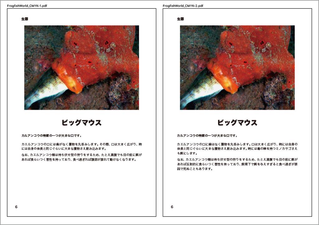 XORで出力した比較PDFのページ(p6)