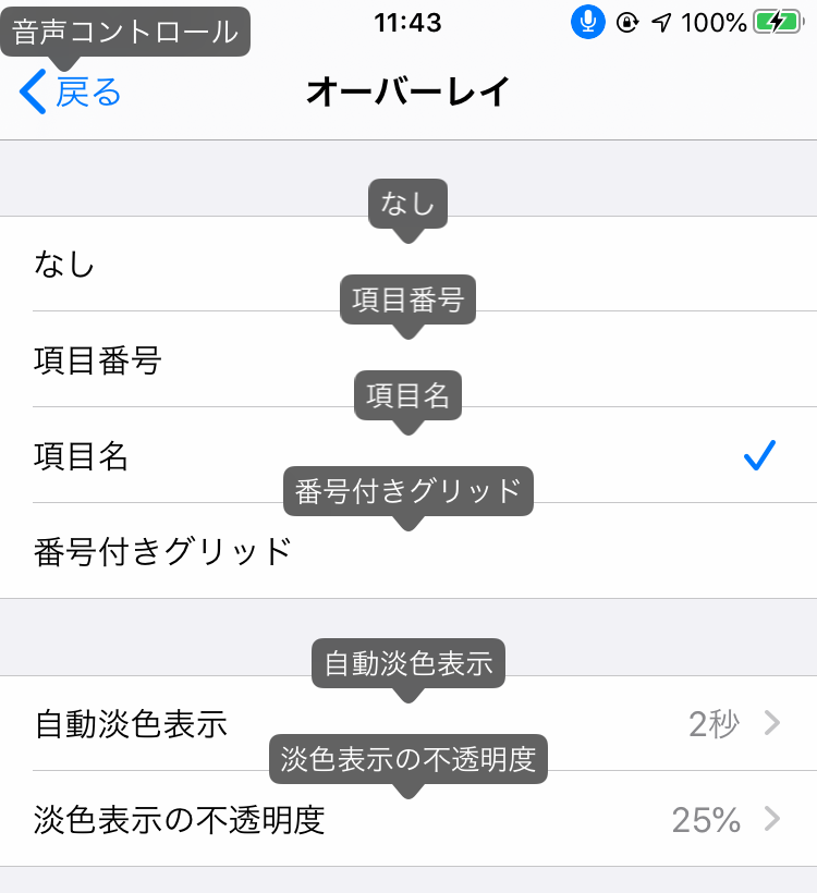 iPhoneの設定:オーバーレイ