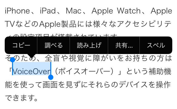 iOSの読み上げオン
